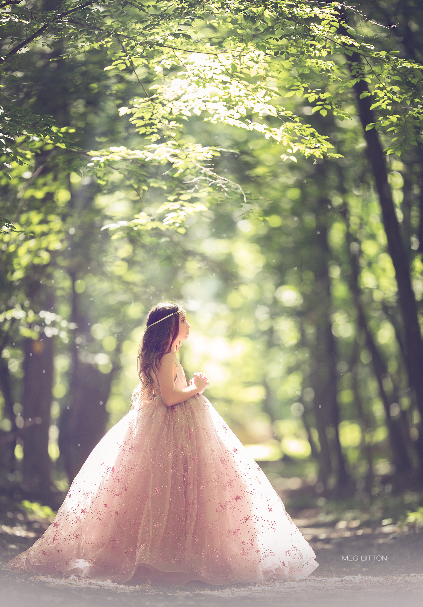 Luminous Silver and Pink Gown