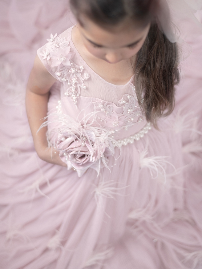 Twilight Gown in Powder Pink